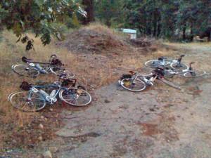 Bikes at Tobin